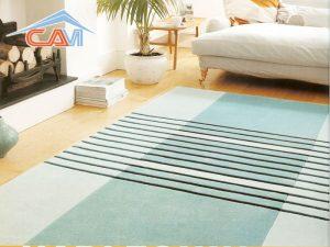 Tổng hợp những công dụng hữu ích của thảm trải sàn